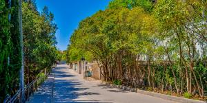 Прогулка по улице Советской в Симеизе