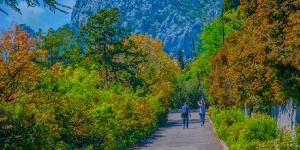 Вид на гору Кошка с улиц Симеиза