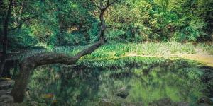 Озеро в Симеизе