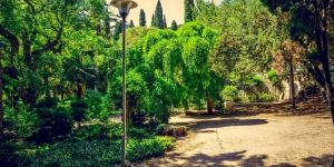 Симеиз парк