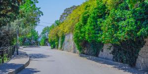 Улицы Симеиза как в парке