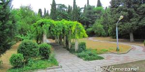 Парк в санатории Симеиз