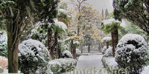 Снег на пальмах в Симеизе